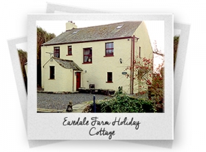 Ewedale Farm Holiday Cottage